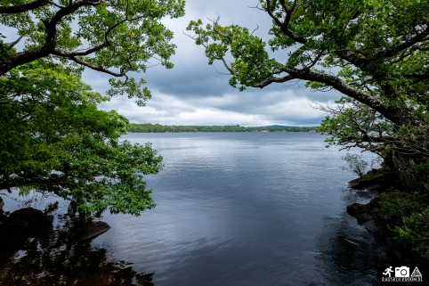 Irland-Killarney_National_Park-4