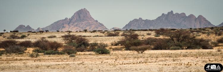 Namibia (28)