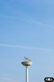 Himmel_Norderney-2