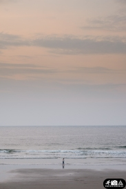 Einsame Spaziergängerin am Strand von Norderney